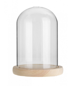 medium stolp, glazen stolp, glazen stolp met houten poppetjes, botanische stolp, wonderzolder.nl