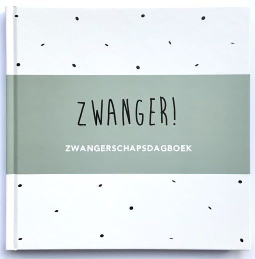 zwangerschapsdagboek, zwanger, invulboek zwangerschap, huisjeno56, wonderzolder.nl